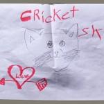 CricketBirthdayBlog7